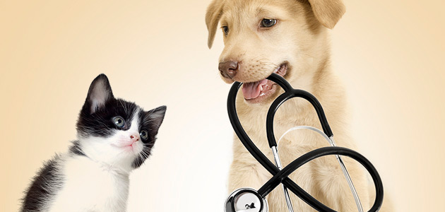 Pet Health Oakville